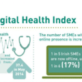 Irish Small Business Website Health Score
